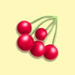 Növények - Cseresznye